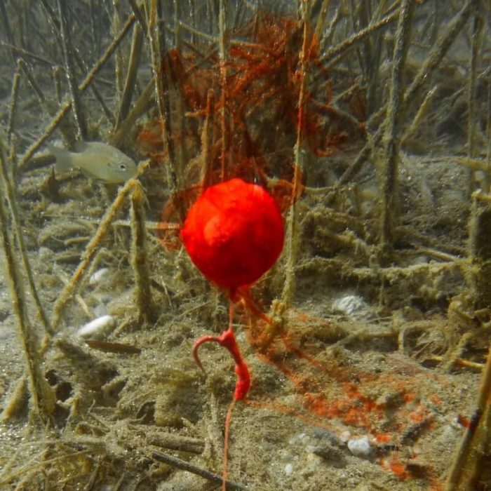 Fluo dip Mikbaits Fluo Shock - Rybárske potreby LM Rybárstvo