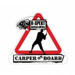 Samolepka R-Spekt CARP RIDE